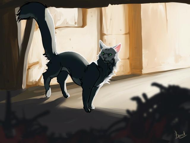 cat_hereos_CBernt